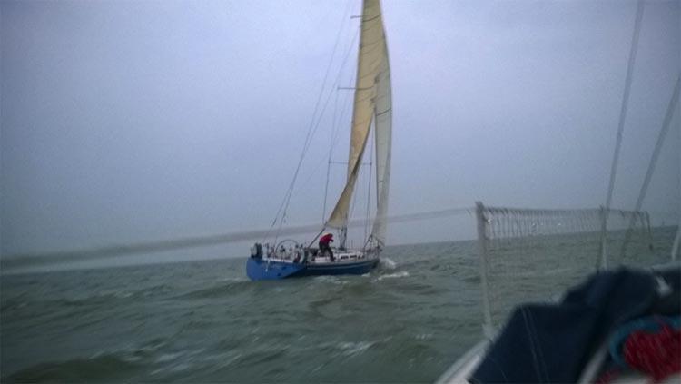 Blue Jane net na start